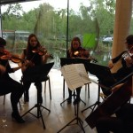 Carlow String Quartet